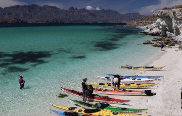 Baja, Mexico: Isla Carmen and Danzante